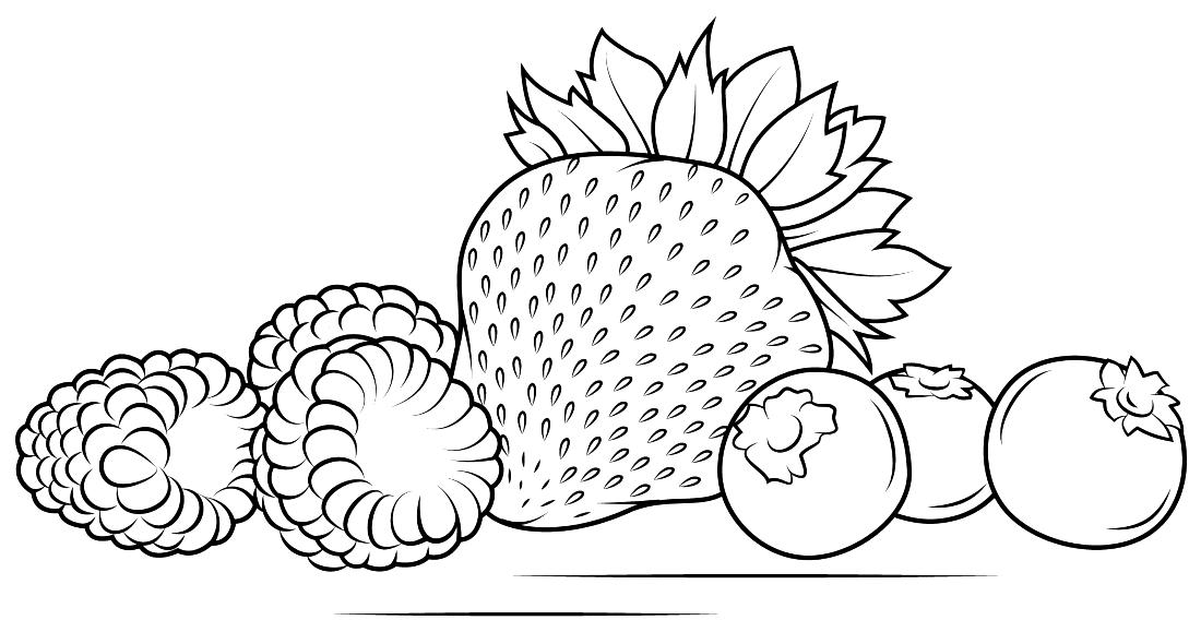 ягоды черника и клубника раскраска 8017 Printonic Ru