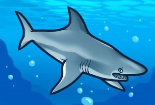 Мультяшная акула картинки
