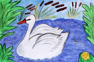 Картинка пеликан для детей