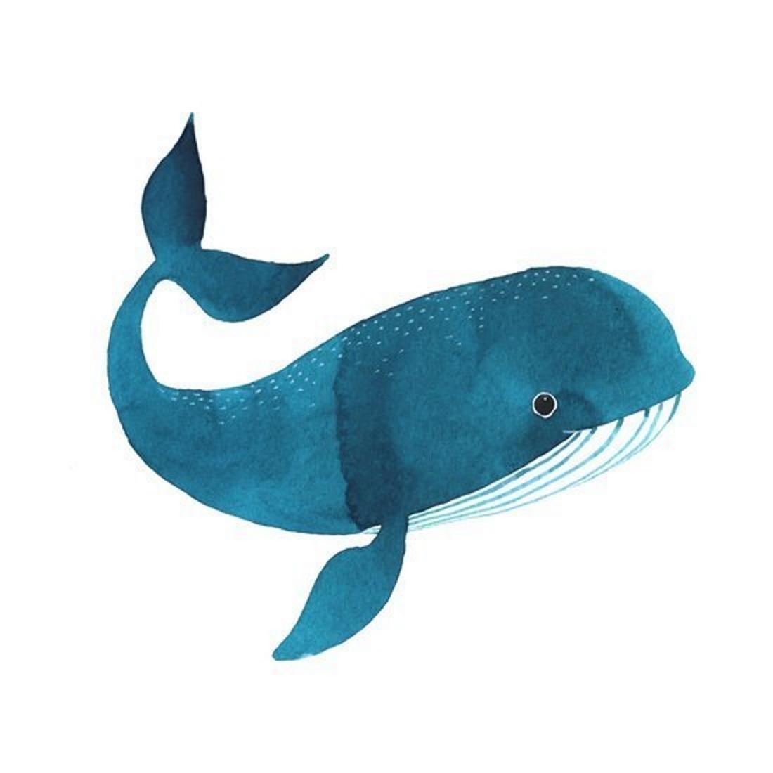 Картинка кита