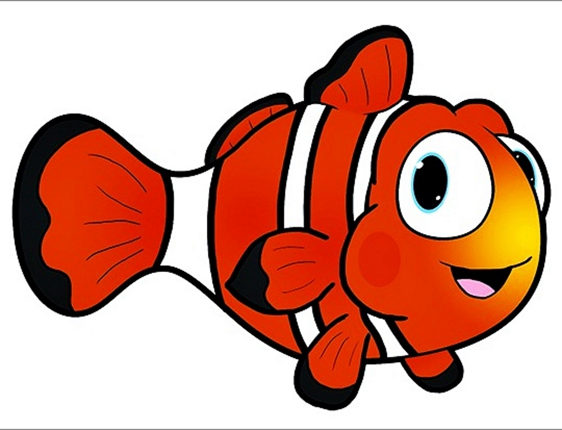 Clown fish drawings - dinocro.info