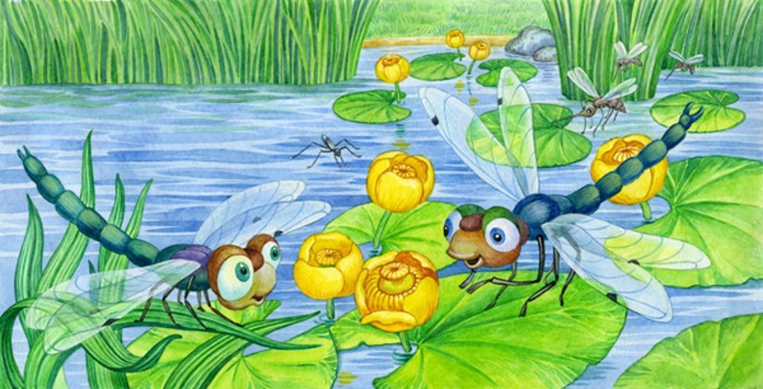стрекоза картинки для детей раскраска