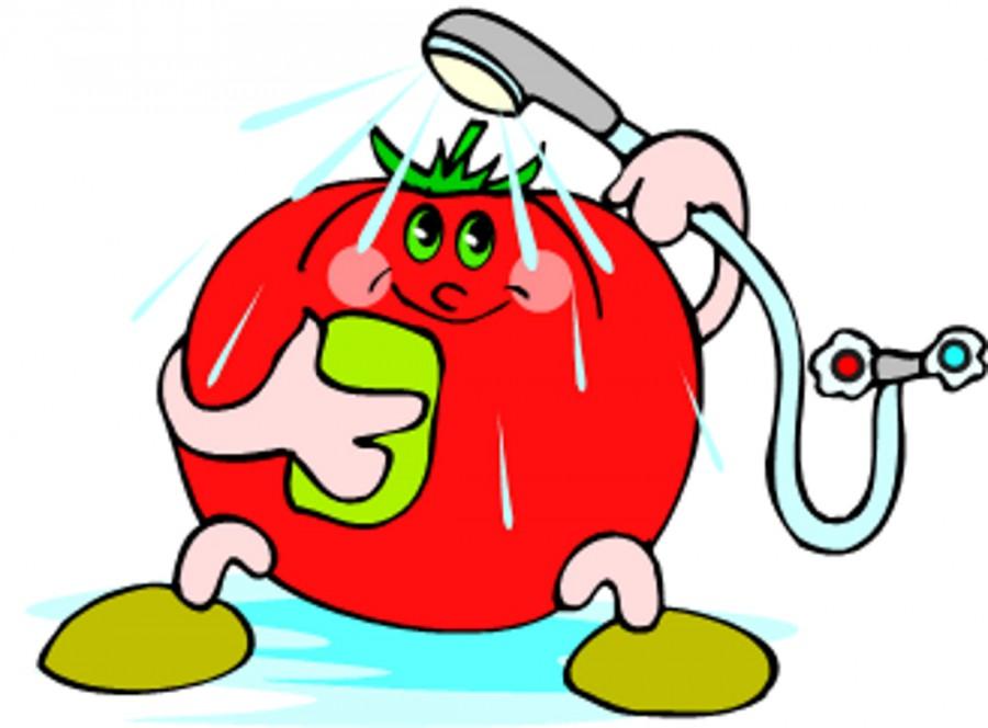 Раскраски для детей помидор