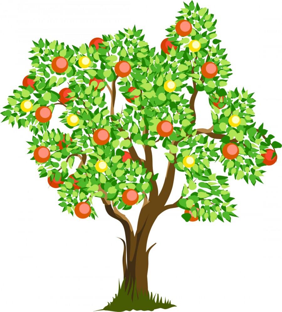 Молодая яблоня ка��инка �11423 printonicru