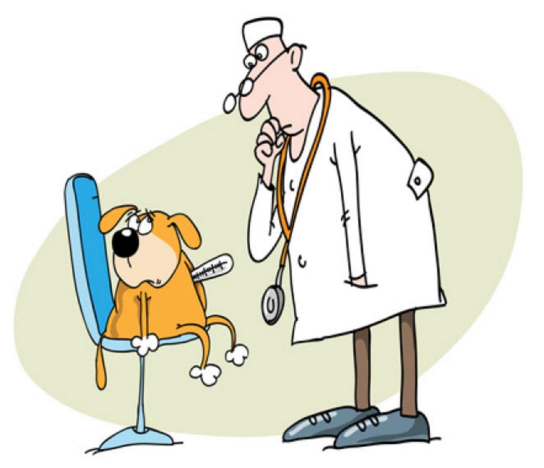 Рисунки ветеринарных врачей